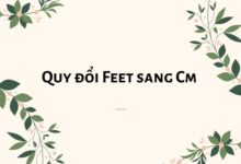 1 feet to m