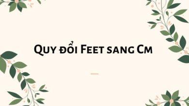1 feet bằng bao nhiêu m