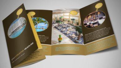 thiết kế brochure đẹp