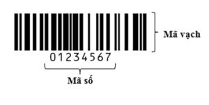 mã sản phẩm là gì