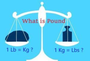 đổi kg sang pound