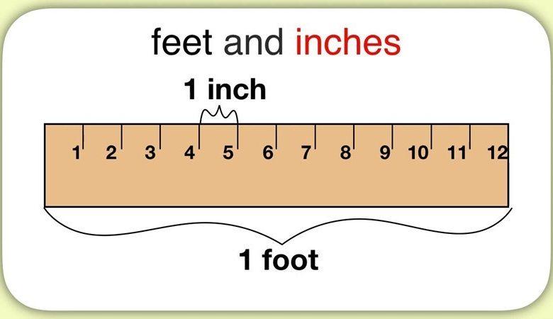 đơn vị feet là gì