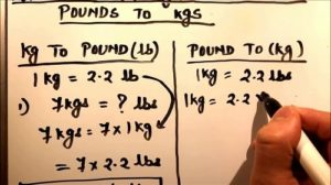 Pound là gì