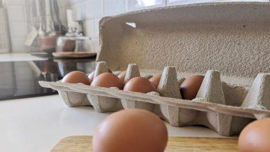 hộp trứng