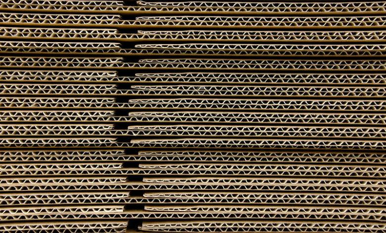 công ty bao bì giấy Cartones del Pacifico