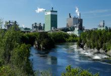 Thực tiễn sản xuất sáng tạo cho một thế giới có ý thức về môi trường