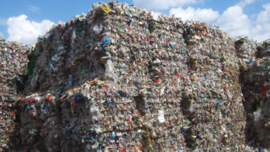 Thiết kế polystyrene mới cho hướng dẫn tái chế do RecyClass xuất bản