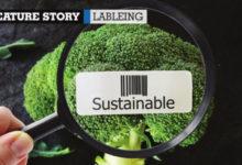 Biên giới mới trong bao bì: Công nghệ cao bền vững